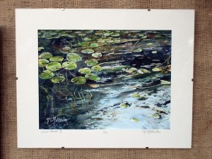 Bottomley captures water-lillies and moving water.