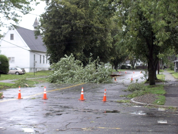 Photo - Framingham DPW workers closed off Grant St. from Howe St. to C St. due to still more downed trees and wires in Framingham. (August 28, 2011)
