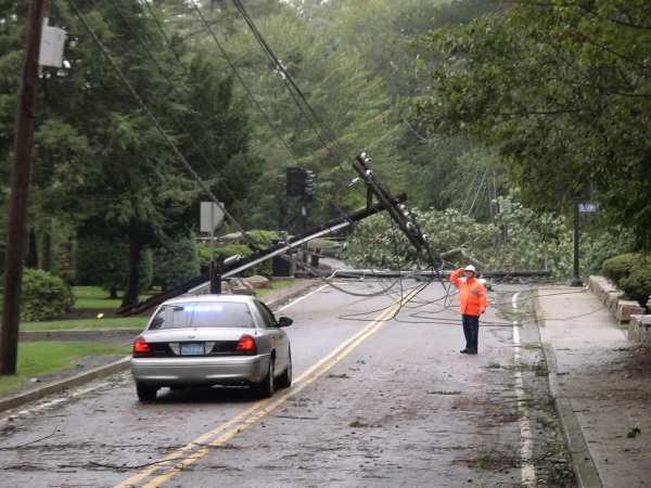 Photo - A tree blown over by Hurricane Irene takes down two phone poles on Salem End Rd. near Temple Street in Framingham, MA (August 28, 2011)