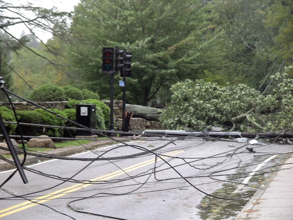Photo - Close up of tree and one of the two phone poles it took down on Salem End Road due to Hurricane Irene in Framingham, MA. (August 28, 2011)