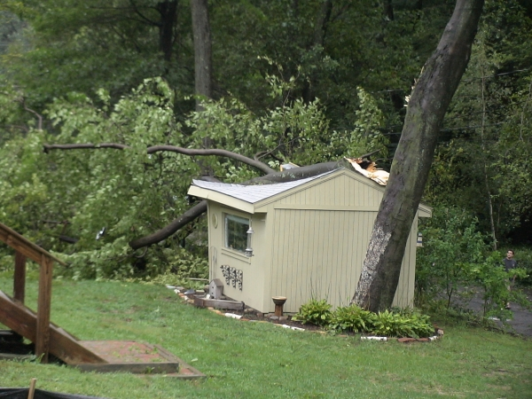 Photo - A tree limb downed by Hurrican Irene crushes this shed in the backyard of 16 Florissant Ave. in the Oak Neighborhood of Framingham (August 28, 2011)