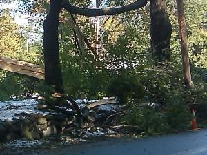 Framingham DPW special storm debris pickup day is November 14, 2011.