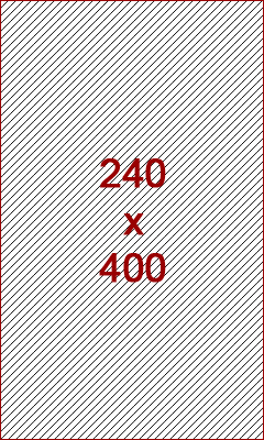 240x400 ad size example