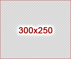 300x250 ad size example