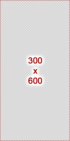 300x600 ad size example